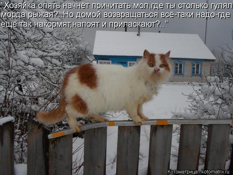 http://kotomatrix.ru/images/lolz/2013/02/12/kotomatritsa_gE.jpg