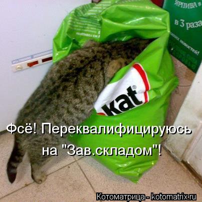 "Котоматрица: Фсё! Переквалифицируюсь  на ""Зав.складом""!"