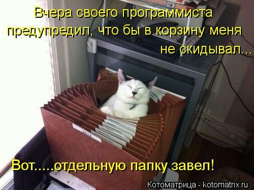 Котоматрица: Вчера своего программиста   предупредил, что бы в корзину меня не скидывал.... Вот.....отдельную папку завел!