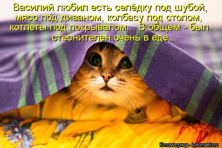 Котоматрица: Василий любил есть селёдку под шубой, мясо под диваном, колбасу под столом, котлеты под покрывалом... В общем - был стеснителен очень в еде...