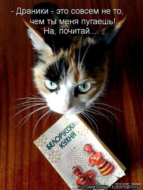 Котоматрица: - Драники - это совсем не то, чем ты меня пугаешь! На, почитай....