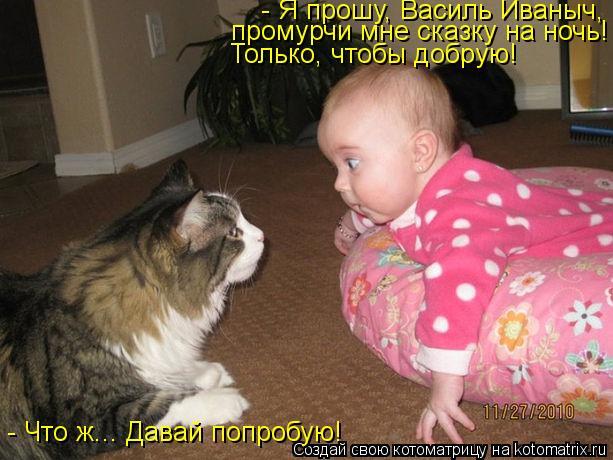 Котоматрица: - Что ж... Давай попробую! - Я прошу, Василь Иваныч, промурчи мне сказку на ночь! Только, чтобы добрую!