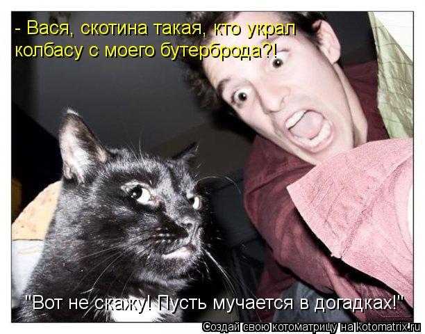 """Котоматрица: """"Вот не скажу! Пусть мучается в догадках!"""" - Вася, скотина такая, кто украл колбасу с моего бутерброда?!"""