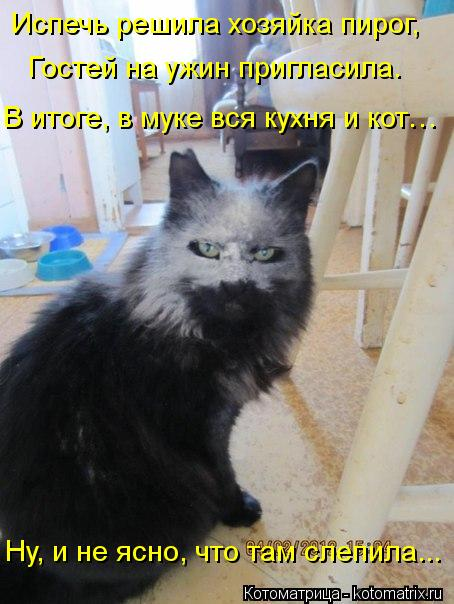 Котоматрица: Испечь решила хозяйка пирог, Гостей на ужин пригласила. В итоге, в муке вся кухня и кот… Ну, и не ясно, что там слепила...