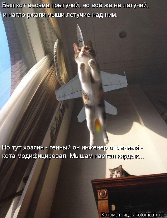 Котоматрица: Был кот весьма прыгучий, но всё же не летучий, и нагло ржали мыши летучие над ним. Но тут хозяин - генный он инженер отменный -  кота модифицир
