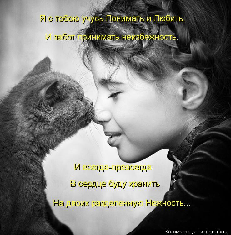 Котоматрица: Я с тобою учусь Понимать и Любить, И забот принимать неизбежность. И всегда-превсегда В сердце буду хранить На двоих разделенную Нежность...