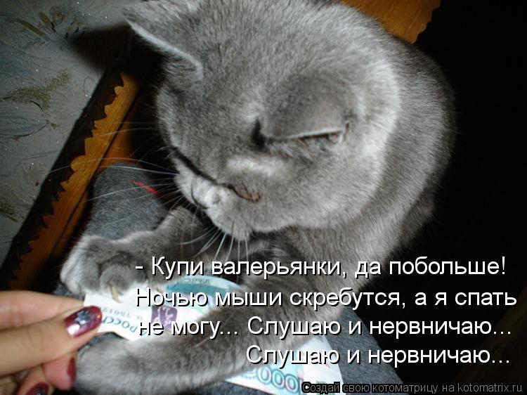 Котоматрица: - Купи валерьянки, да побольше! Ночью мыши скребутся, а я спать  не могу... Слушаю и нервничаю... Слушаю и нервничаю...