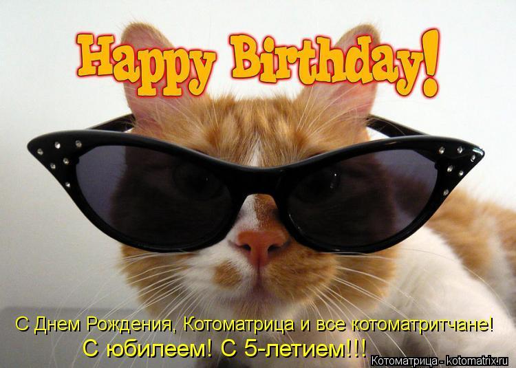 Котоматрица: С Днем Рождения, Котоматрица и все котоматритчане! С юбилеем! С 5-летием!!!
