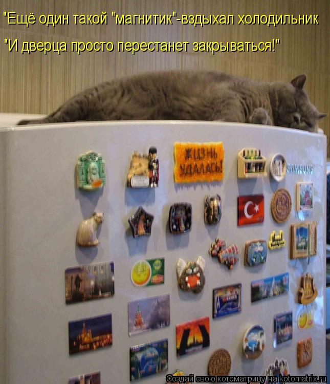 """Котоматрица: """"Ещё один такой """"магнитик""""-вздыхал холодильник """"И дверца просто перестанет закрываться!"""""""