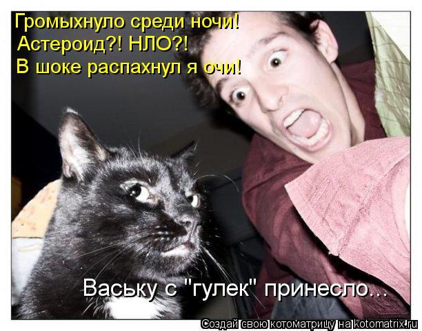 """Котоматрица: Громыхнуло среди ночи! Астероид?! НЛО?! В шоке распахнул я очи! Ваську с """"гулек"""" принесло..."""