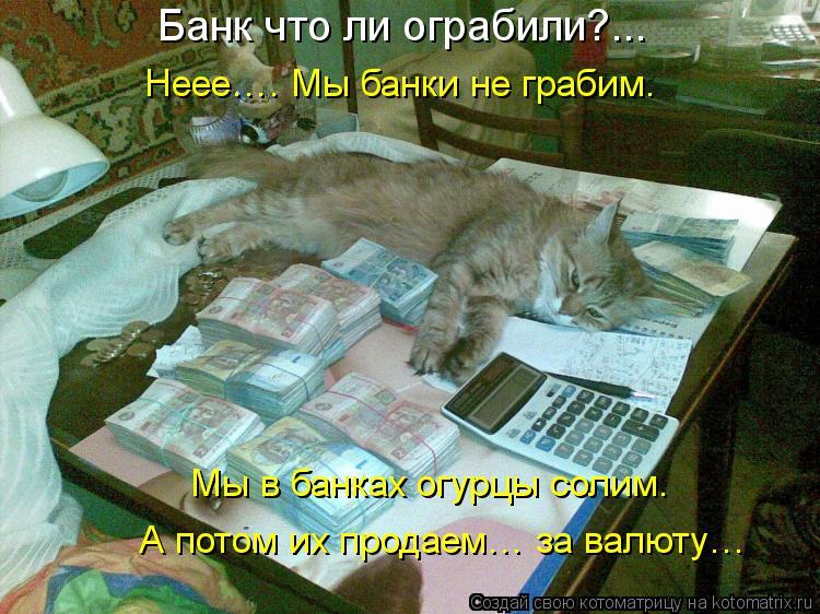 Котоматрица: Банк что ли ограбили?...  Неее…. Мы банки не грабим.  Мы в банках огурцы солим. А потом их продаем… за валюту…