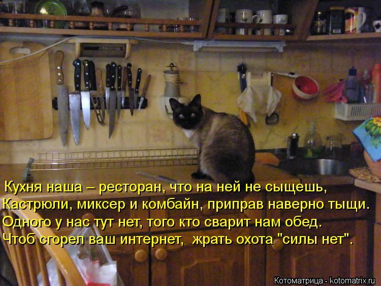 Котоматрица: Кухня наша – ресторан, что на ней не сыщешь, Кастрюли, миксер и комбайн, приправ наверно тыщи. Одного у нас тут нет, того кто сварит нам обед.