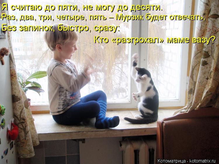 Котоматрица: Я считаю до пяти, не могу до десяти. Раз, два, три, четыре, пять – Мурзик будет отвечать, Без запинок, быстро, сразу: Кто «разгрохал» маме вазу?
