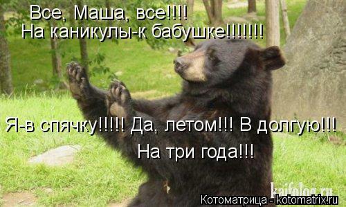 Котоматрица: Все, Маша, все!!!!  На каникулы-к бабушке!!!!!!! Я-в спячку!!!!! Да, летом!!! В долгую!!! На три года!!!