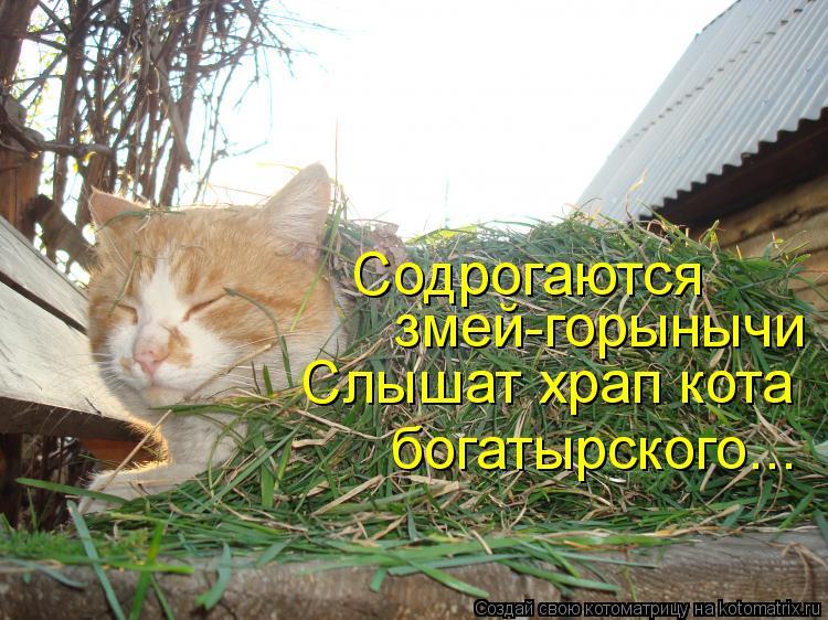 Котоматрица: Содрогаются змей-горынычи Слышат храп кота  богатырского...