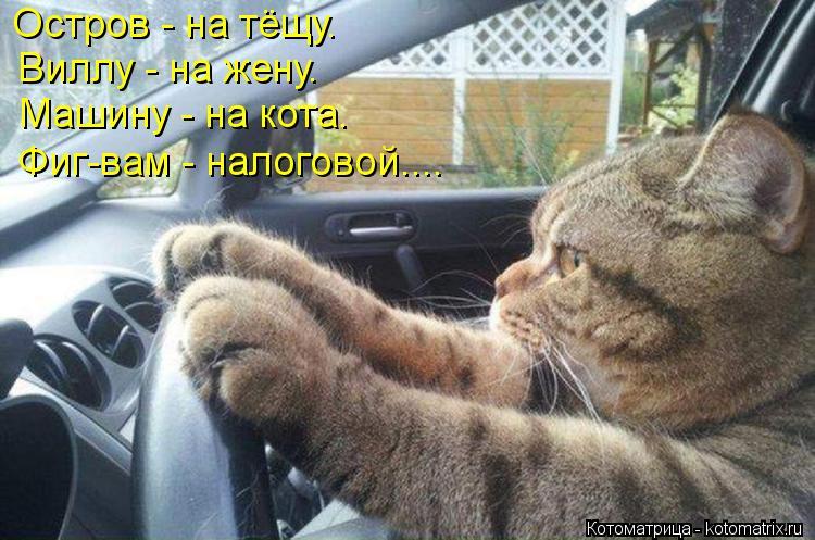 Котоматрица: Остров - на тёщу. Виллу - на жену. Машину - на кота. Фиг-вам - налоговой....