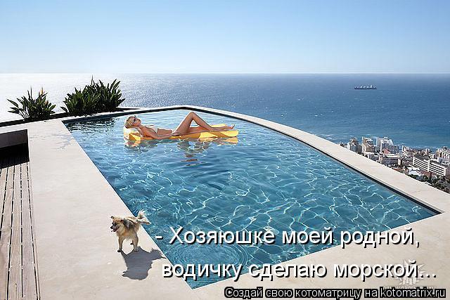 Котоматрица: - Хозяюшке моей родной, водичку сделаю морской...