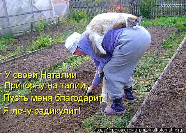 Котоматрица: У своей Наталии Прикорну на талии, Пусть меня благодарит, Я лечу радикулит!
