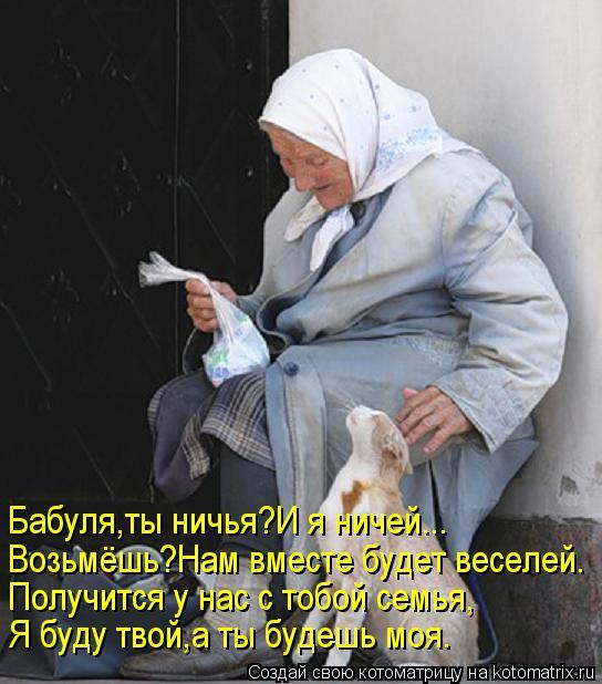 Котоматрица: Бабуля,ты ничья?И я ничей... Возьмёшь?Нам вместе будет веселей. Получится у нас с тобой семья, Я буду твой,а ты будешь моя.