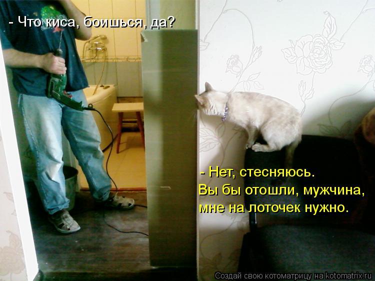 Котоматрица: - Что киса, боишься, да? Вы бы отошли, мужчина,  - Нет, стесняюсь.   мне на лоточек нужно.