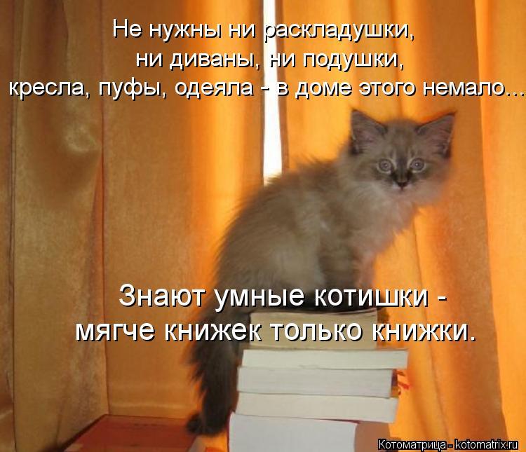 Котоматрица: Не нужны ни раскладушки,  ни диваны, ни подушки, кресла, пуфы, одеяла - в доме этого немало... мягче книжек только книжки. Знают умные котишки -