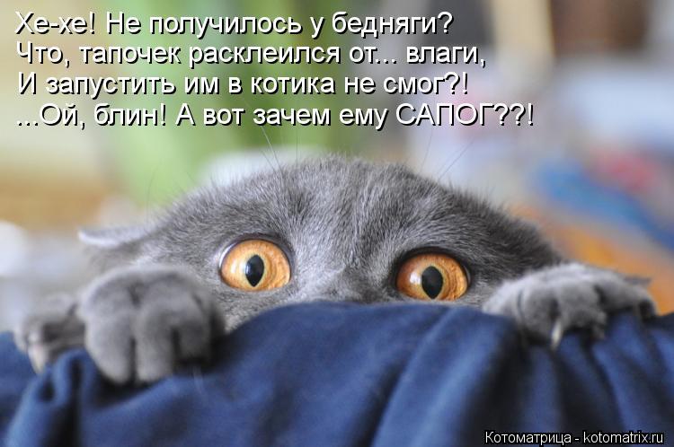 Котоматрица: Хе-хе! Не получилось у бедняги? Что, тапочек расклеился от... влаги, И запустить им в котика не смог?! ...Ой, блин! А вот зачем ему САПОГ??!