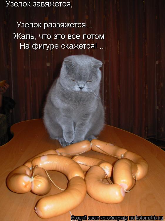 Котоматрица: Узелок завяжется, Узелок развяжется... Жаль, что это все потом На фигуре скажется!...