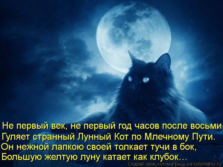 Котоматрица: Не первый век, не первый год часов после восьми Гуляет странный Лунный Кот по Млечному Пути. Он нежной лапкою своей толкает тучи в бок, Больш