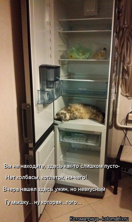 Котоматрица: Вы не находите, здесь как-то слишком пусто- Нет колбасы, котлеток, ни-чего! Вчера нашел здесь ужин, но невкусный Ту мышку... ну которая...того...