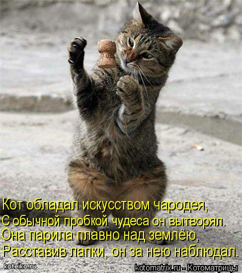 Котоматрица: Кот обладал искусством чародея, С обычной пробкой чудеса он вытворял. Она парила плавно над землёю, Расставив лапки, он за нею наблюдал.
