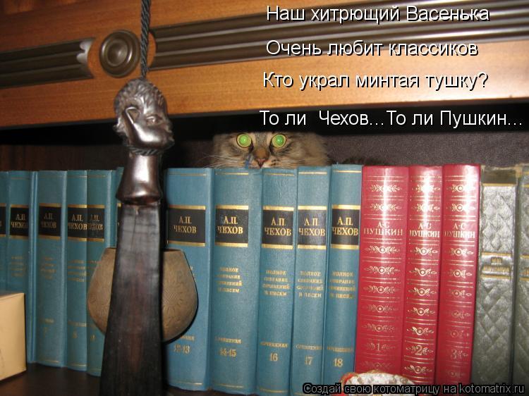 Котоматрица: Наш хитрющий Васенька Очень любит классиков Кто украл минтая тушку? То ли  Чехов...То ли Пушкин...