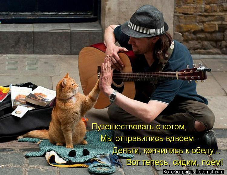 Котоматрица: Путешествовать с котом, Деньги, кончились к обеду... Мы отправились вдвоем. Вот теперь, сидим, поём!