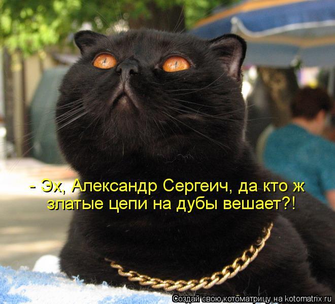 Котоматрица: - Эх, Александр Сергеич, да кто ж златые цепи на дубы вешает?!