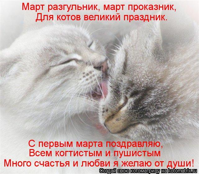 Котоматрица: Март разгульник, март проказник,  Для котов великий праздник. С первым марта поздравляю, Всем когтистым и пушистым Много счастья и любви я ж