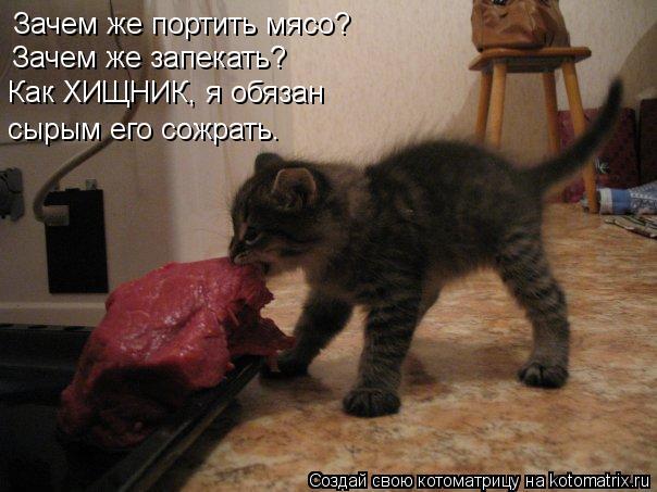 Котоматрица: Зачем же портить мясо? Зачем же запекать? Как ХИЩНИК, я обязан сырым его сожрать.