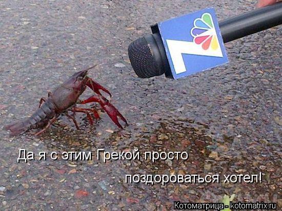 Котоматрица: Да я с этим Грекой просто поздороваться хотел!