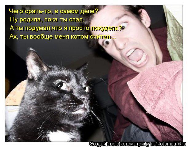 Котоматрица: Чего орать-то, в самом деле?  Ну родила, пока ты спал. А ты подумал,что я просто похудела? Ах, ты вообще меня котом считал...
