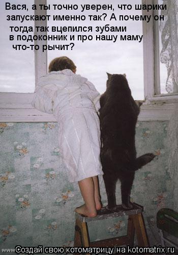 Котоматрица: Вася, а ты точно уверен, что шарики  запускают именно так? А почему он  тогда так вцепился зубами  в подоконник и про нашу маму  что-то рычит?