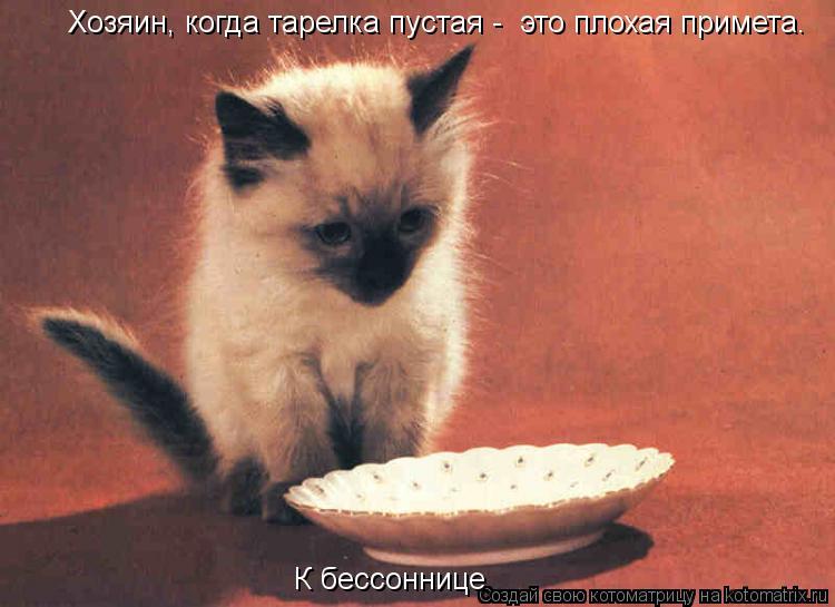 Котоматрица: Хозяин, когда тарелка пустая -  это плохая примета. К бессоннице