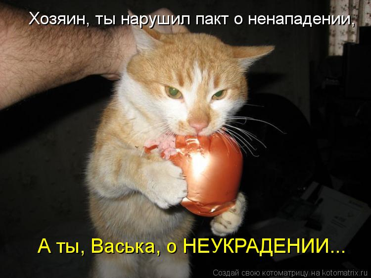 Котоматрица: А ты, Васька, о НЕУКРАДЕНИИ... Хозяин, ты нарушил пакт о ненападении,
