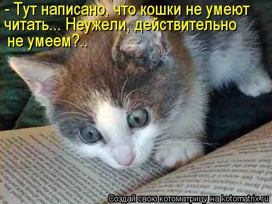 Котоматрица: - Тут написано, что кошки не умеют читать... Неужели, действительно не умеем?..