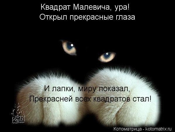 Котоматрица: Квадрат Малевича, ура! Открыл прекрасные глаза И лапки, миру показал, Прекрасней всех квадратов стал!