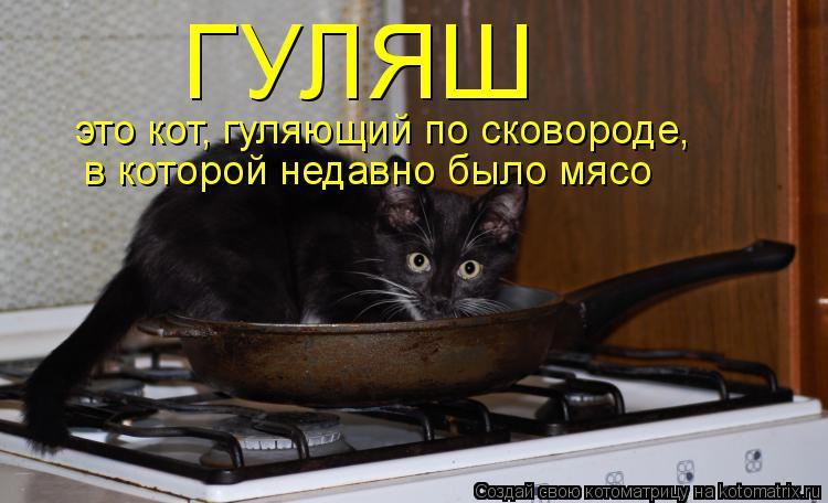 Котоматрица: ГУЛЯШ это кот, гуляющий по сковороде, в которой недавно было мясо
