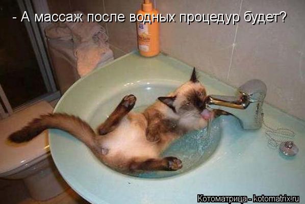 Котоматрица: - А массаж после водных процедур будет?
