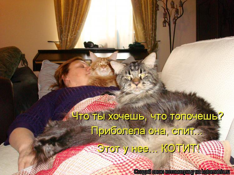 Котоматрица: Что ты хочешь, что топочешь? Приболела она, спит... Этот у нее... КОТИТ!
