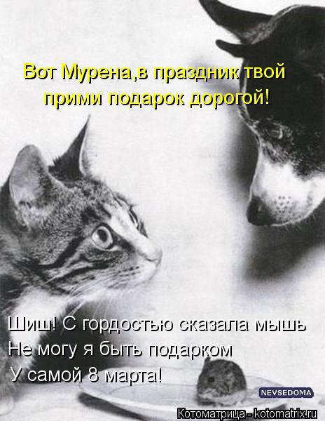 Котоматрица: Вот Мурена,в праздник твой прими подарок дорогой! Не могу я быть подарком Шиш! С гордостью сказала мышь У самой 8 марта!