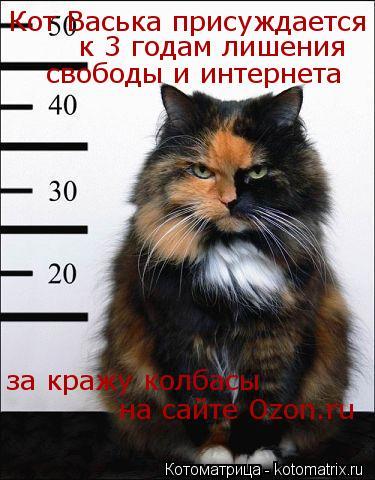 Котоматрица: Кот Васька присуждается к 3 годам лишения свободы и интернета за кражу колбасы на сайте Ozon.ru