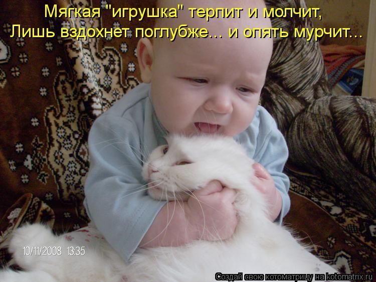 """Котоматрица: Мягкая """"игрушка"""" терпит и молчит, Лишь вздохнет поглубже... и опять мурчит..."""