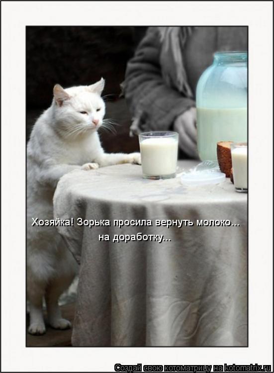 Котоматрица: Хозяйка! Зорька просила вернуть молоко... на доработку...