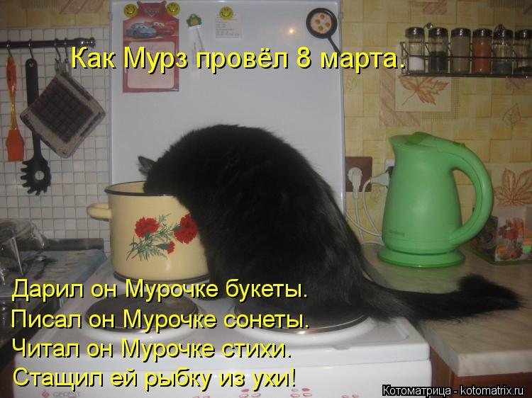 Котоматрица: Как Мурз провёл 8 марта. Дарил он Мурочке букеты. Писал он Мурочке сонеты. Читал он Мурочке стихи. Стащил ей рыбку из ухи!